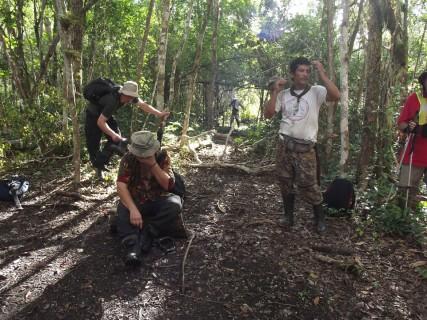 Gwatemala - dżungla