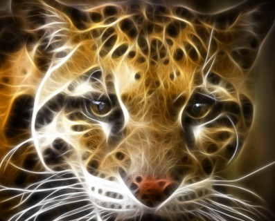 Duchy zwierząt,duch Jaguara