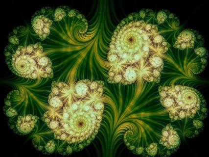 Potężne duchy roślin, ayahuasca