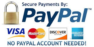 Paypal secured payment online