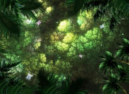 Dżungla, duchy roślin, duchy drzew
